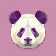 Profile picture of Tech Panda