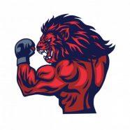 Profile picture of MMA Bro